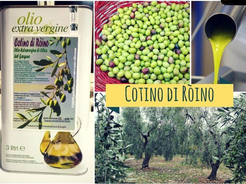 3 litri Olio Cotino di Ròino da Ischitella Gargano