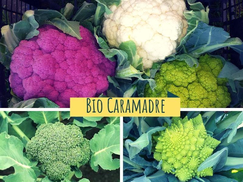 Mix Fiori Bio, (Cavolfiore, Broccolo, Romanesco)
