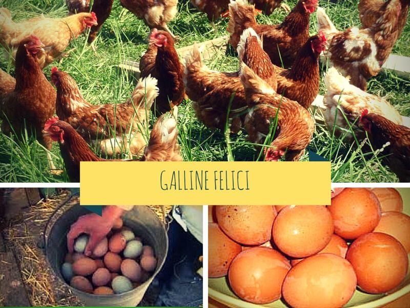6 uova fresche da allevamento all'aperto