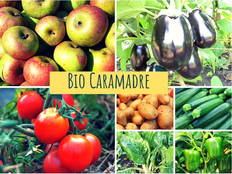 Frutta e verdura BIO cassetta Piccola