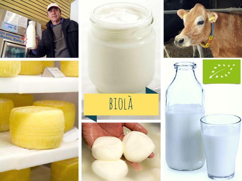 Latte crudo, Mozzarella, Yogurt coagulo intero e Cacio crudo