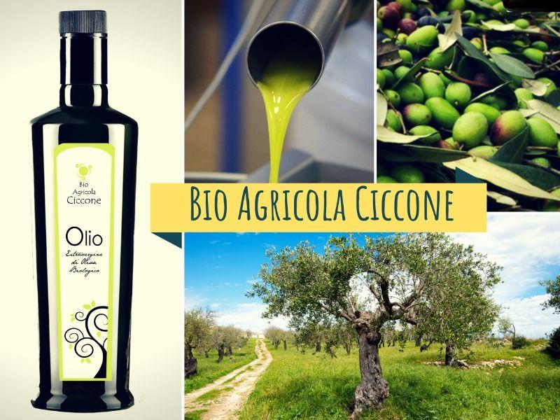 Olio extravergine di Oliva Bio 0.75 l.